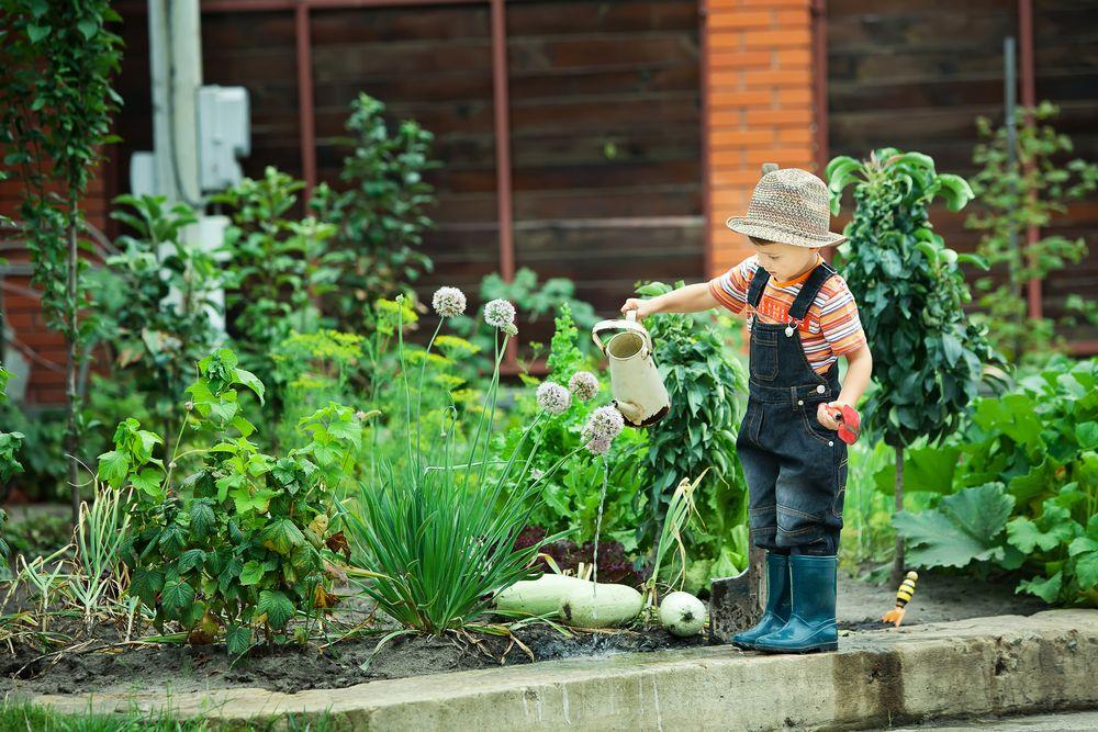 Lovely Vegetable Garden Ideas For Kids Part - 9: 6 Backyard Chores For Kids