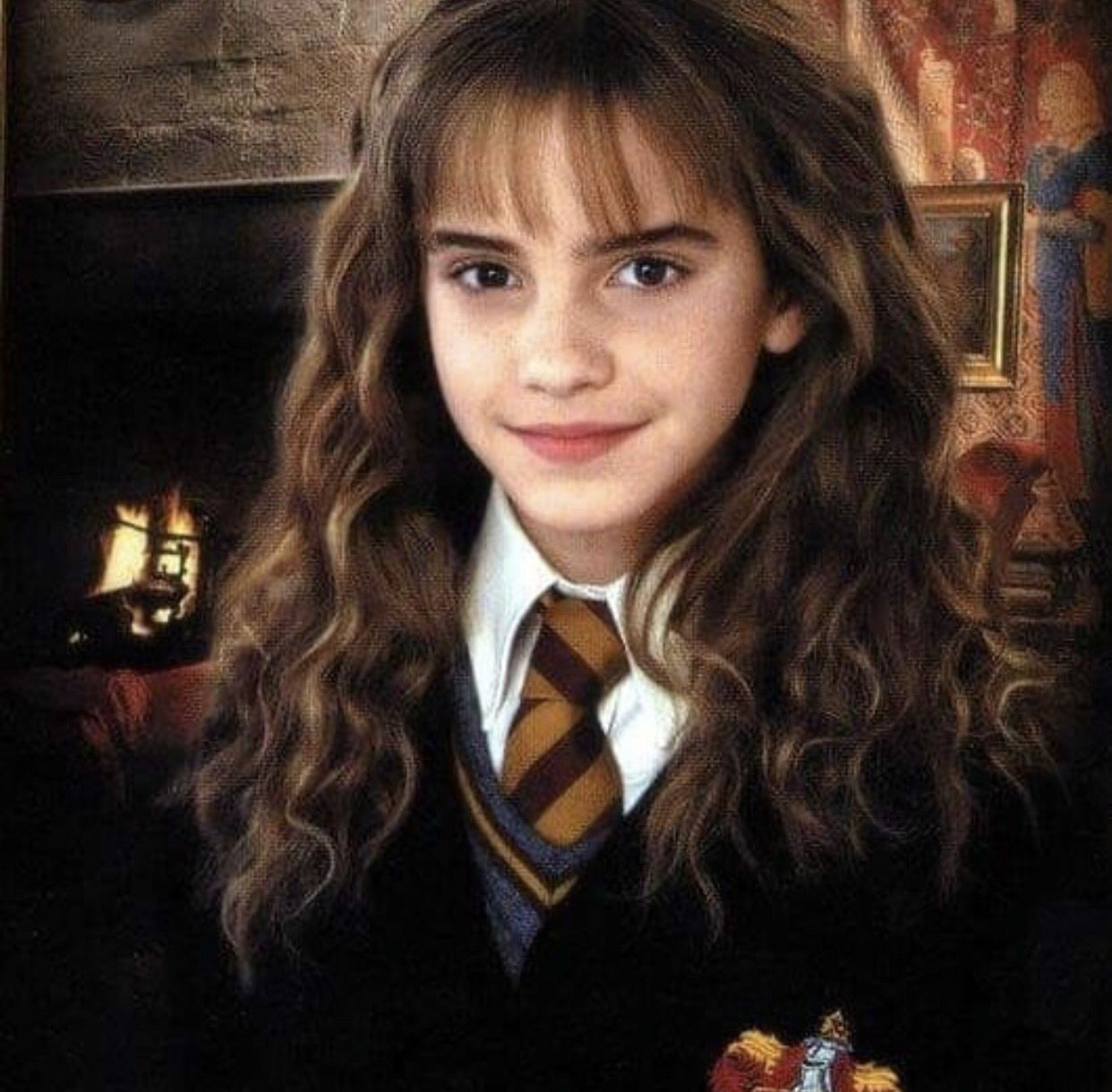 Harry Potter Harry Potter Characters Hermione Granger Hair Hermione Granger