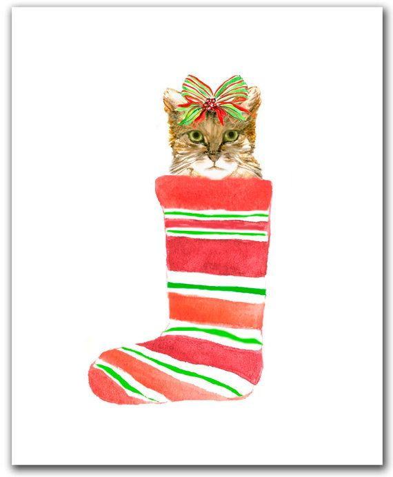 Cat in Christmas stocking Tabby cat Christmas cat by ShirleyBell