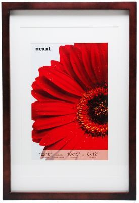 Staples Nexxt Gallery Double Matted Wood Frame, 12 x 18, Java