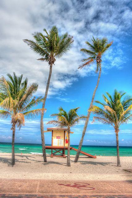 Lifeguard House And Palm Trees Hollywood Florida Love Beach