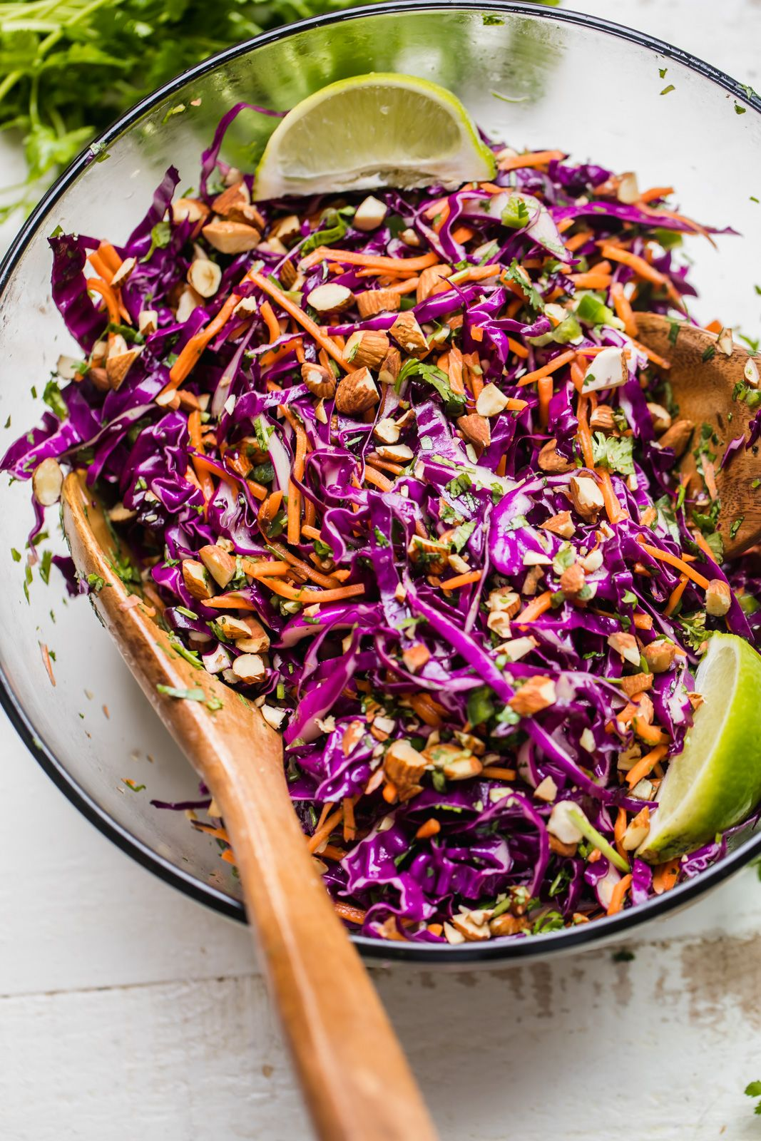 Best Healthy Coleslaw Ever No Mayo Ambitious Kitchen Recipe Healthy Coleslaw Healthy Coleslaw Recipes Purple Cabbage Recipes