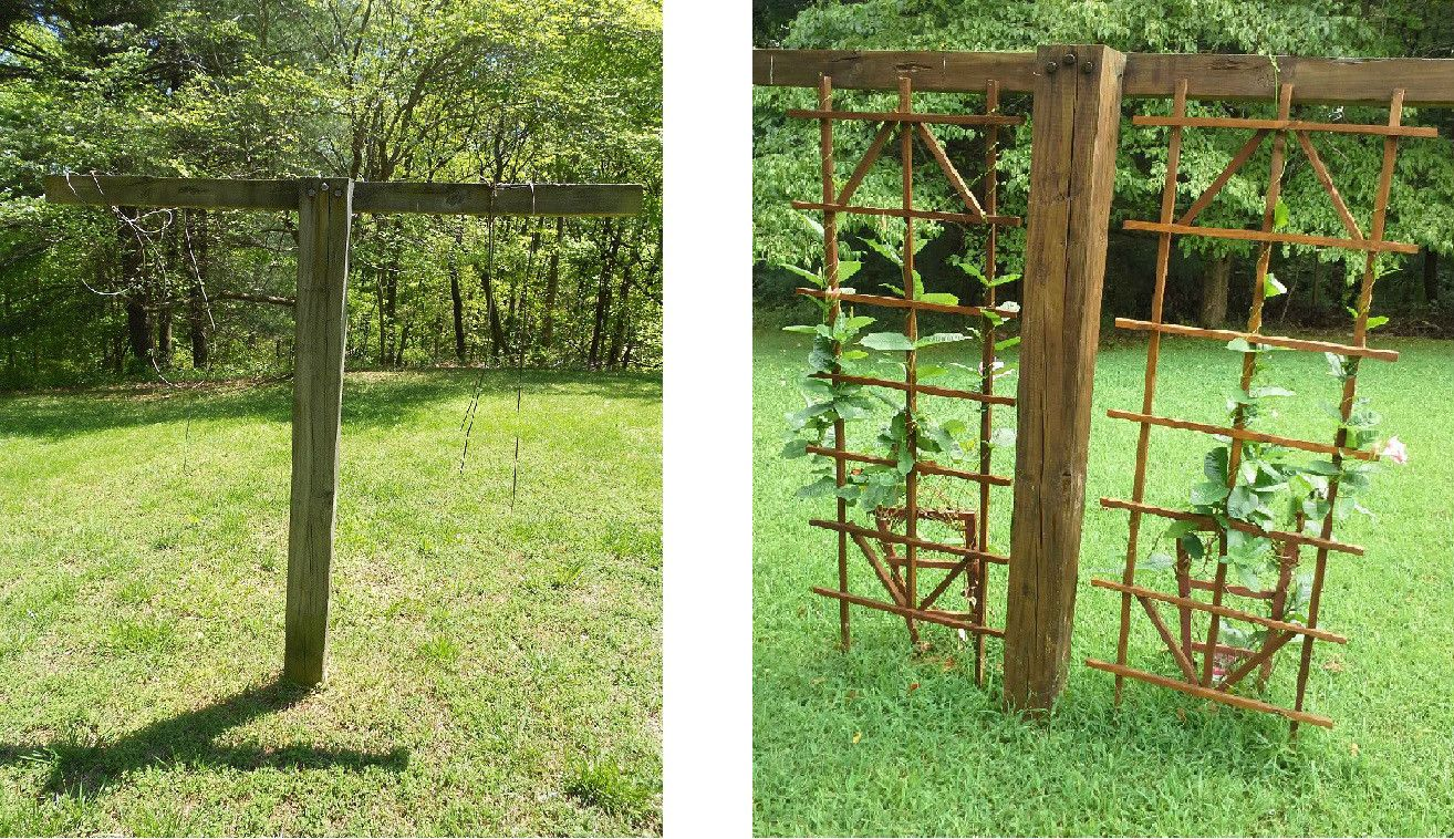 Before Spring And After Now Old Clothesline Post In My Yard