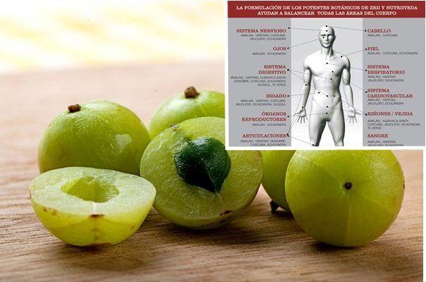 cual es la fruta con mas vitamina c del mundo