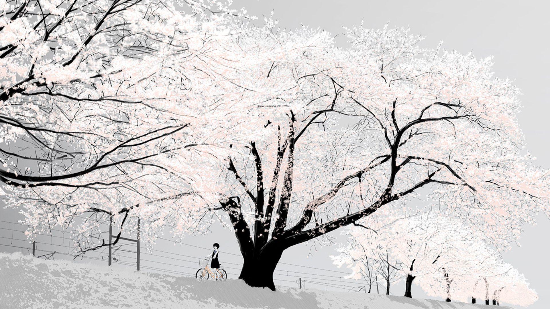 Discreet Anime Wallpapers Album On Imgur Artistic Wallpaper Scenery Anime Wallpaper Freezing anime desktop wallpaper