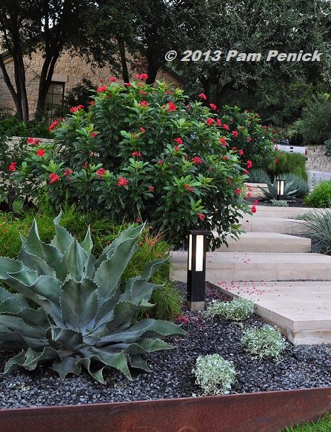 Digging   Gardening Wisely U0026 Beautifully In A Hot Climate. Austin Texas  Landscape. Flower