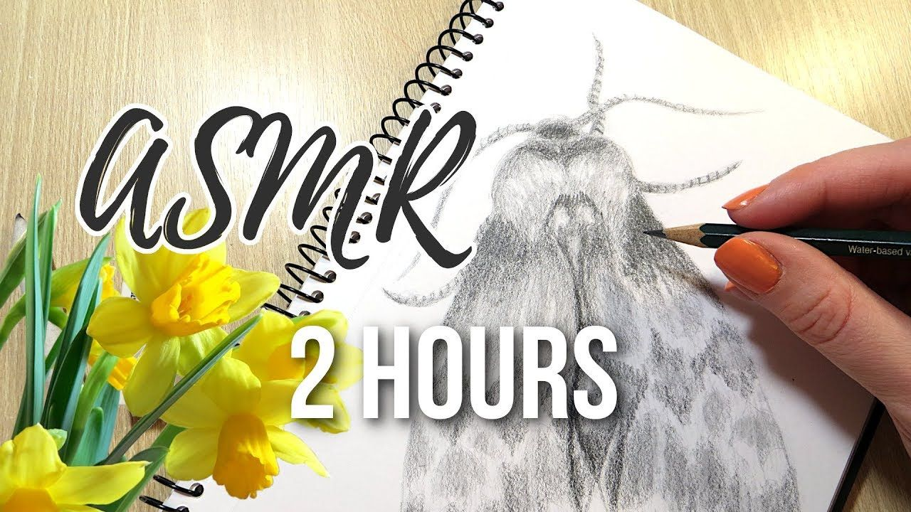 Asmr No Talking two hours of pencil drawing asmr    no talking. two hours of