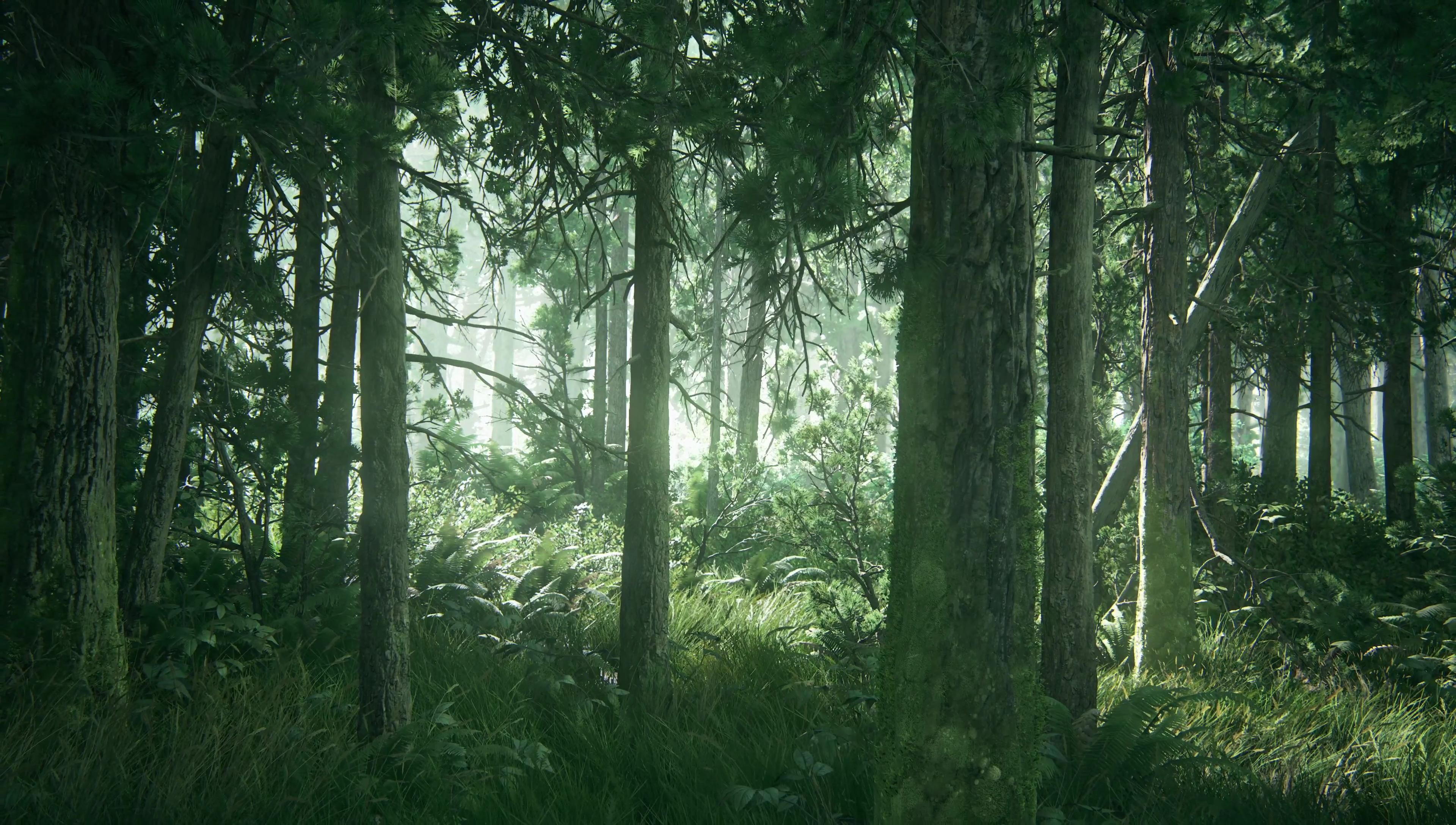 The Last of Us Part 2 - 38 4K Screenshots/Wallpapers   Avatar images, Fantasy places, Live ...