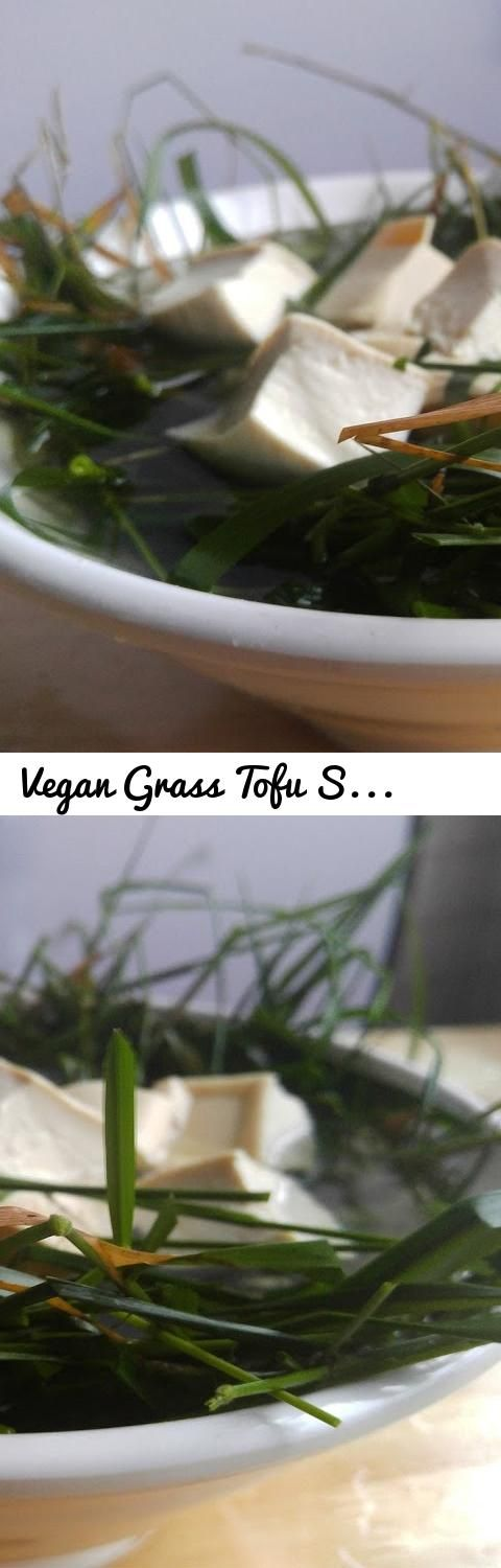 Vegan grass tofu soup bbq pit boys style tags recipes bbq tags recipes bbq recipe grilling food channel tv pitmasters ribs chicken pork barbeque bar pinteres forumfinder Choice Image
