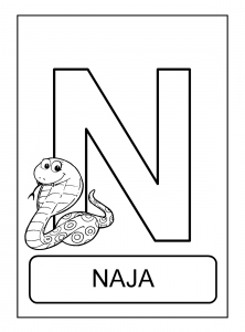 Alfabeto De Animais N Para Colorir Animais Para Colorir Projeto