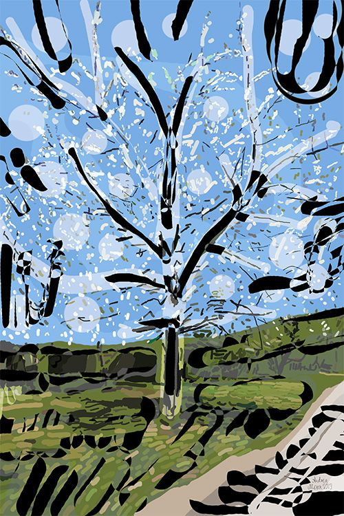 Andrea Mora  title: A Tree in a Park  (2013)  original size: 60x90 cm  digital painting