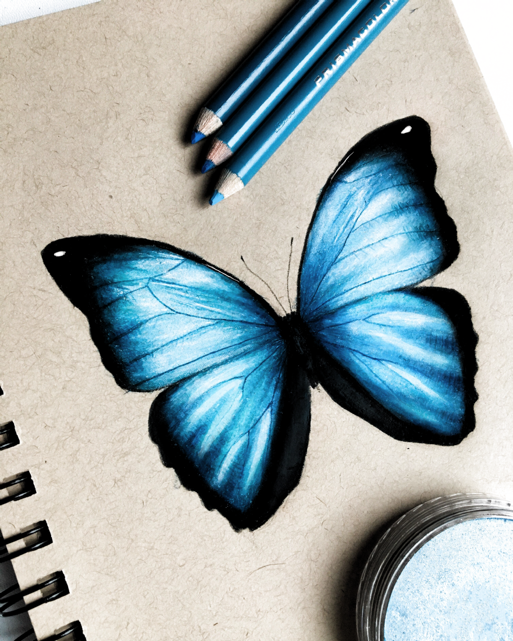 Butterfly Drawing I Drew This Blue Butterfly And I Really Like How It Turned Out I Made This With Prismacol Prismacolor Art Color Pencil Art Butterfly Drawing