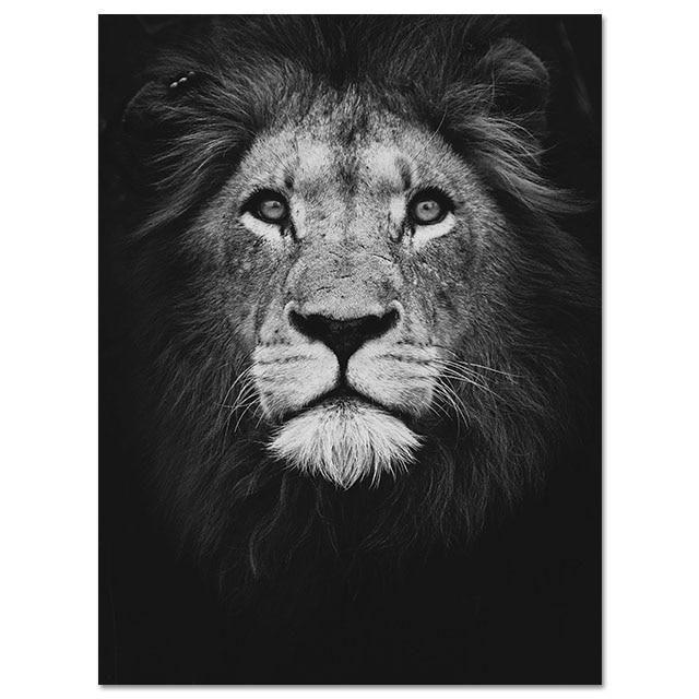 Safari Animals Print - Lion / 28 x 20 (70cm x 50cm)