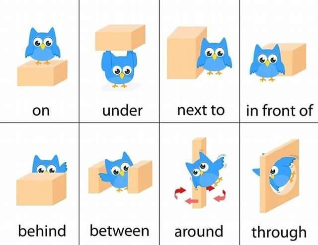 Prepositions Of Place Lang Arts Ideas Pinterest English - Next to preposition