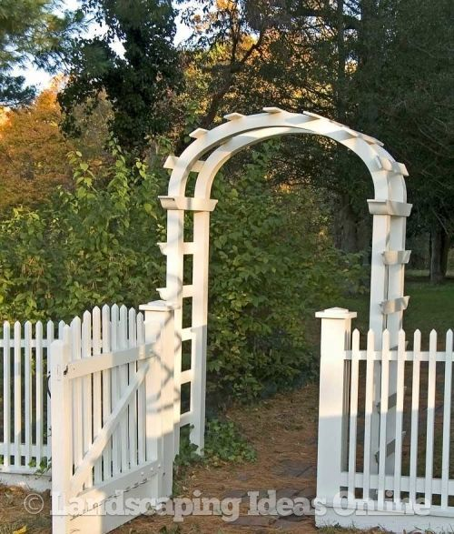 Picket Fence Amp Garden Arch Next Summer S Project For The