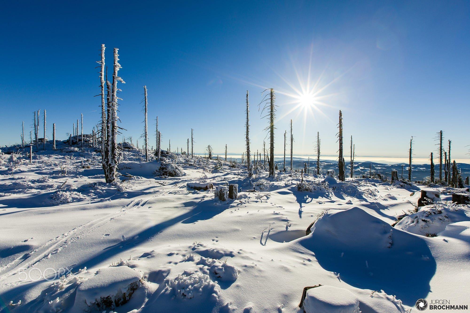 #Photography #500px Winter am Plöckenstein by jbrochmann https://t.co/Yr56PYDekQ #IFTTT #Nature #HappyHolidays https://t.co/Ip23CC5BLG #f #photography