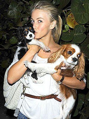 Julianne Hough Tom Cruise Is A Fan Of New Puppy Dog Heaven Pure Breed Dogs Pets