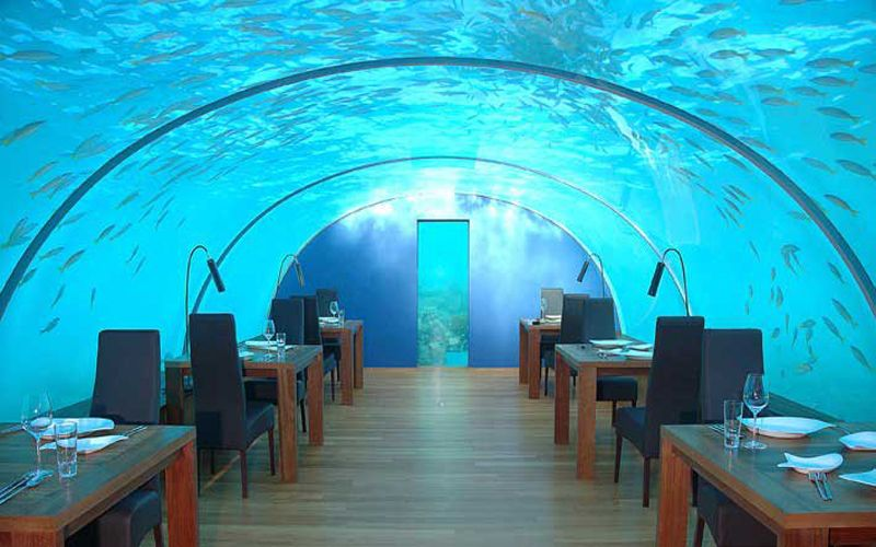 These Are The World S 10 Most Expensive Restaurant You Really Need A Ger Pocket To Eat Out Here Above Picture Is Ithaa At Maldives