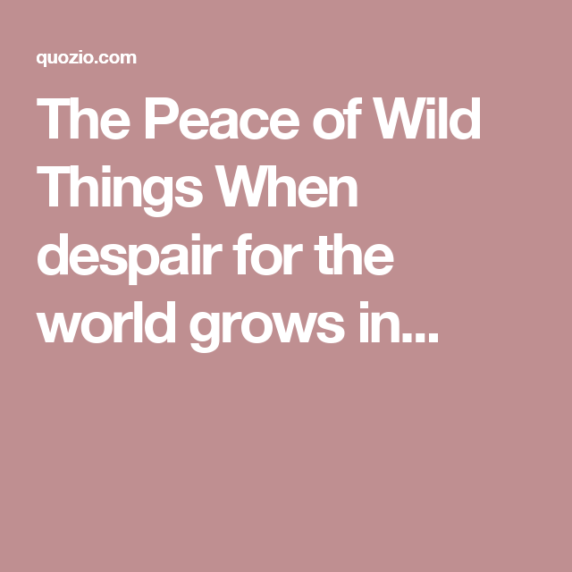 The Peace of Wild Things When despair for the world grows in...