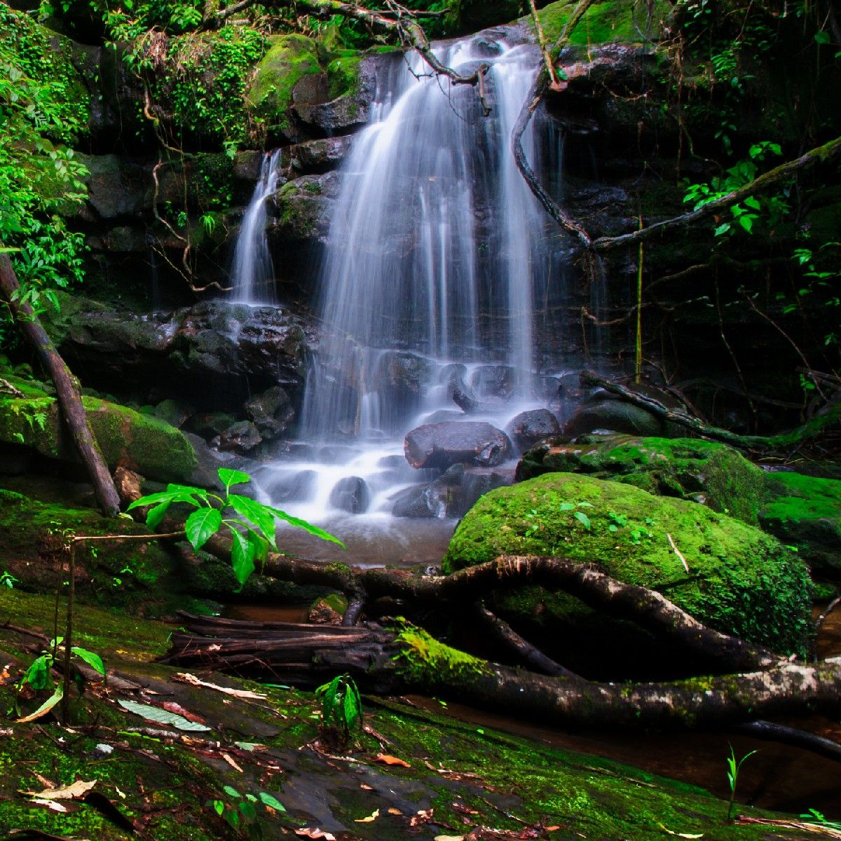 Blue Waterfall Wall Mural Nature Landscapes A tranquil