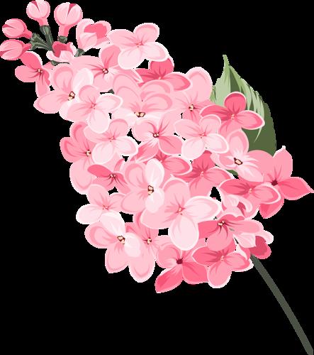 Beautiful Flowers 1 (20).png KYTIČKY KRESLENÉ
