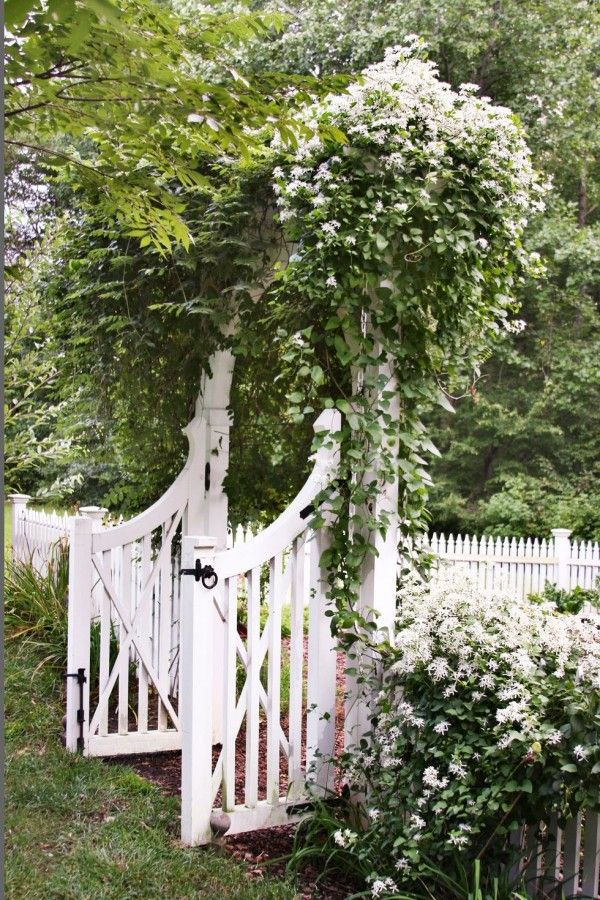 Photo of Idéer til klassisk hageutforming for ditt uteområde – Ferske ideer til interiør, dekorasjon og landskap