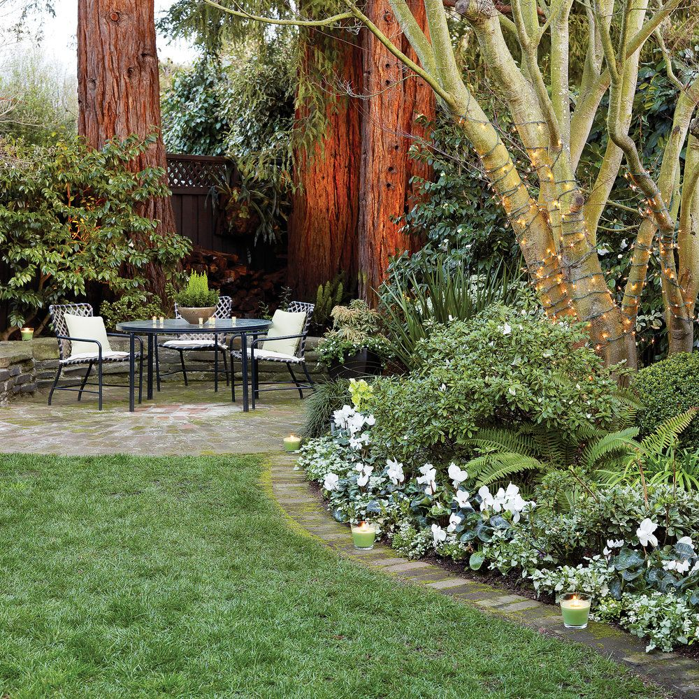 17 quick winter garden spruce ups winter plants plants and