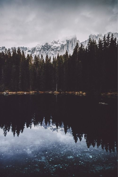 Bosques Tumblr Fotografia Paisaje