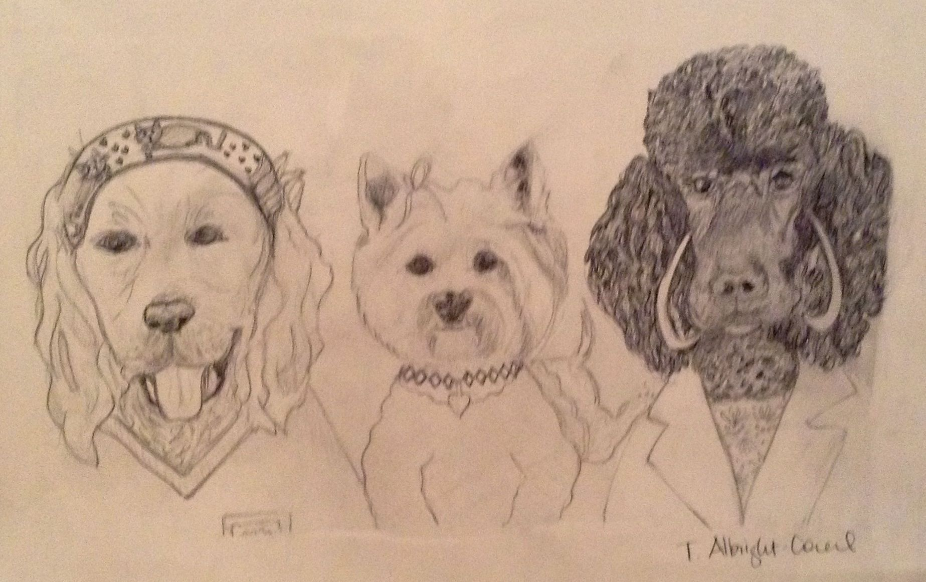 Girls Night Out Sketch #petart #dogs #sketches