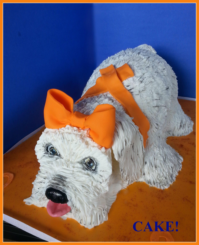 Girl puppy cake cake to support lymphoma and leukemia cake
