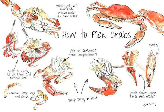 Dreams Take Flight October 2011 Crab Feast Crab Crab Cakes