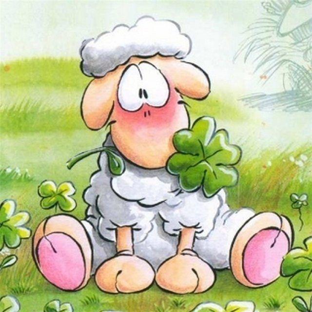 Смешные рисунки овечка