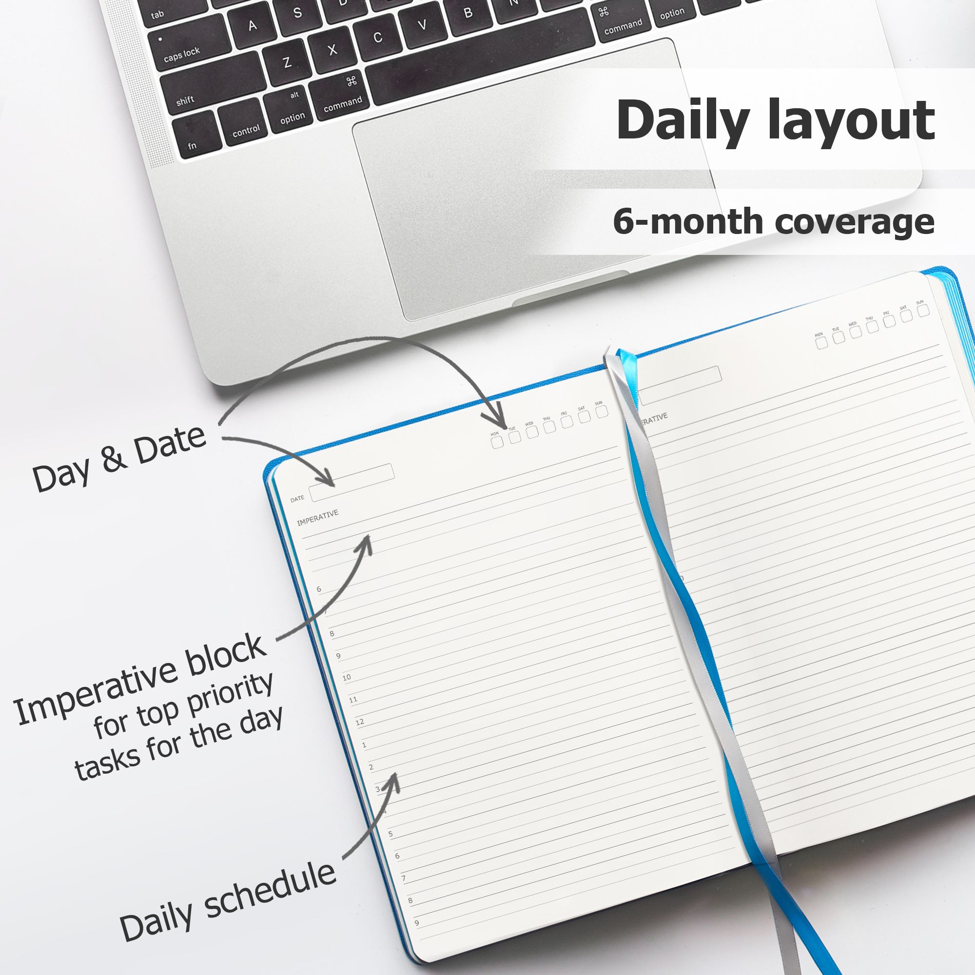 myplans non dated appointment planner daily monthly planner and