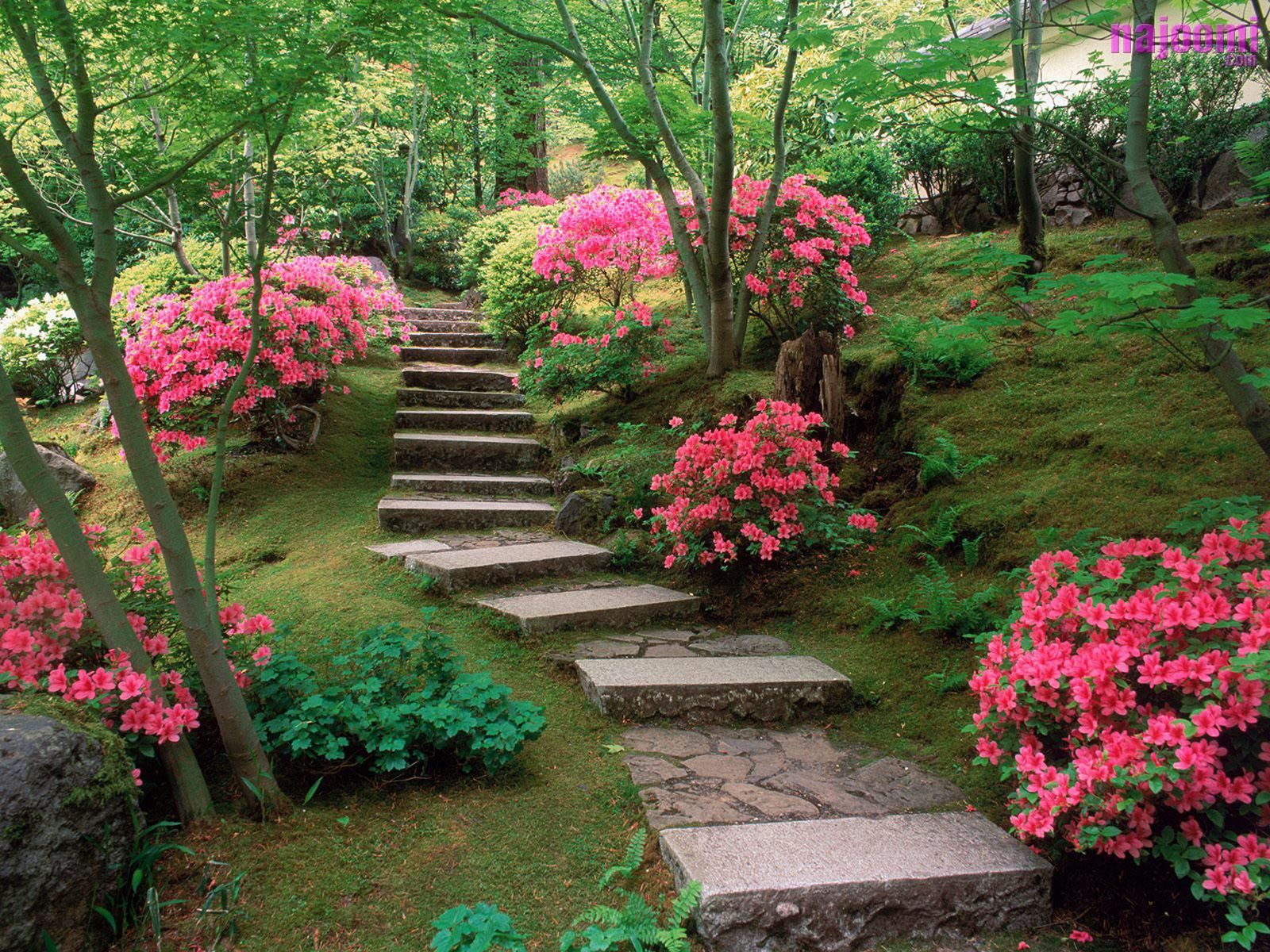 beautiful gardens |  garden can be a great deal of fun. to take