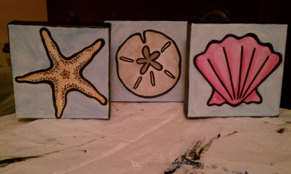 Star fish, sand dollar, and shell collection - from SunniChic at Etsy.com