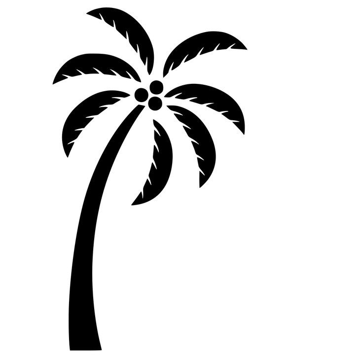 Free Svg Files For Silhouette Palm Tree Silhouette Silhouette Template Silhouette Cameo Projects