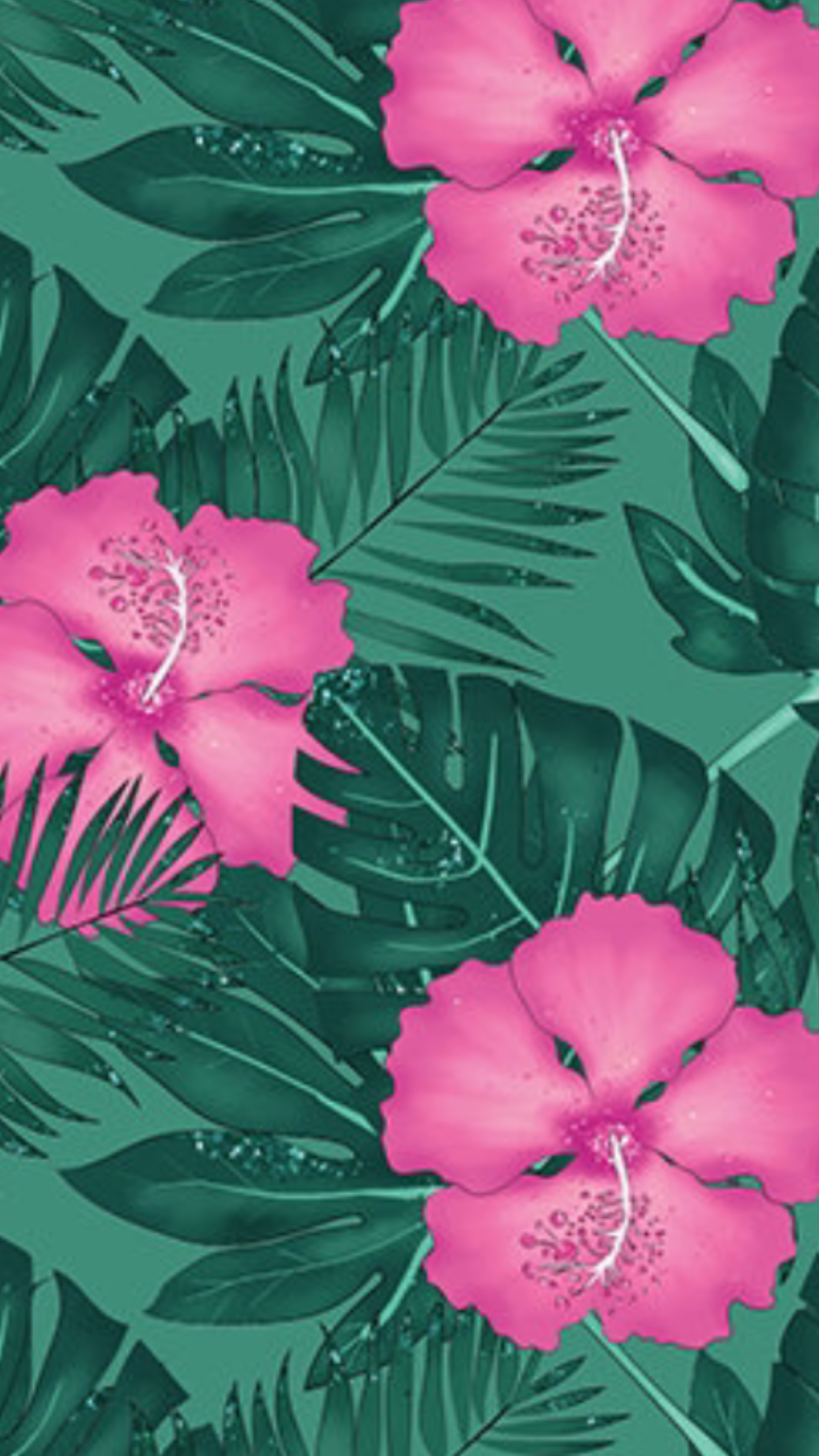 Pink Hibiscus Iphone Wallpaper Flower Iphone Wallpaper Flower Wallpaper Lotus Flower Wallpaper