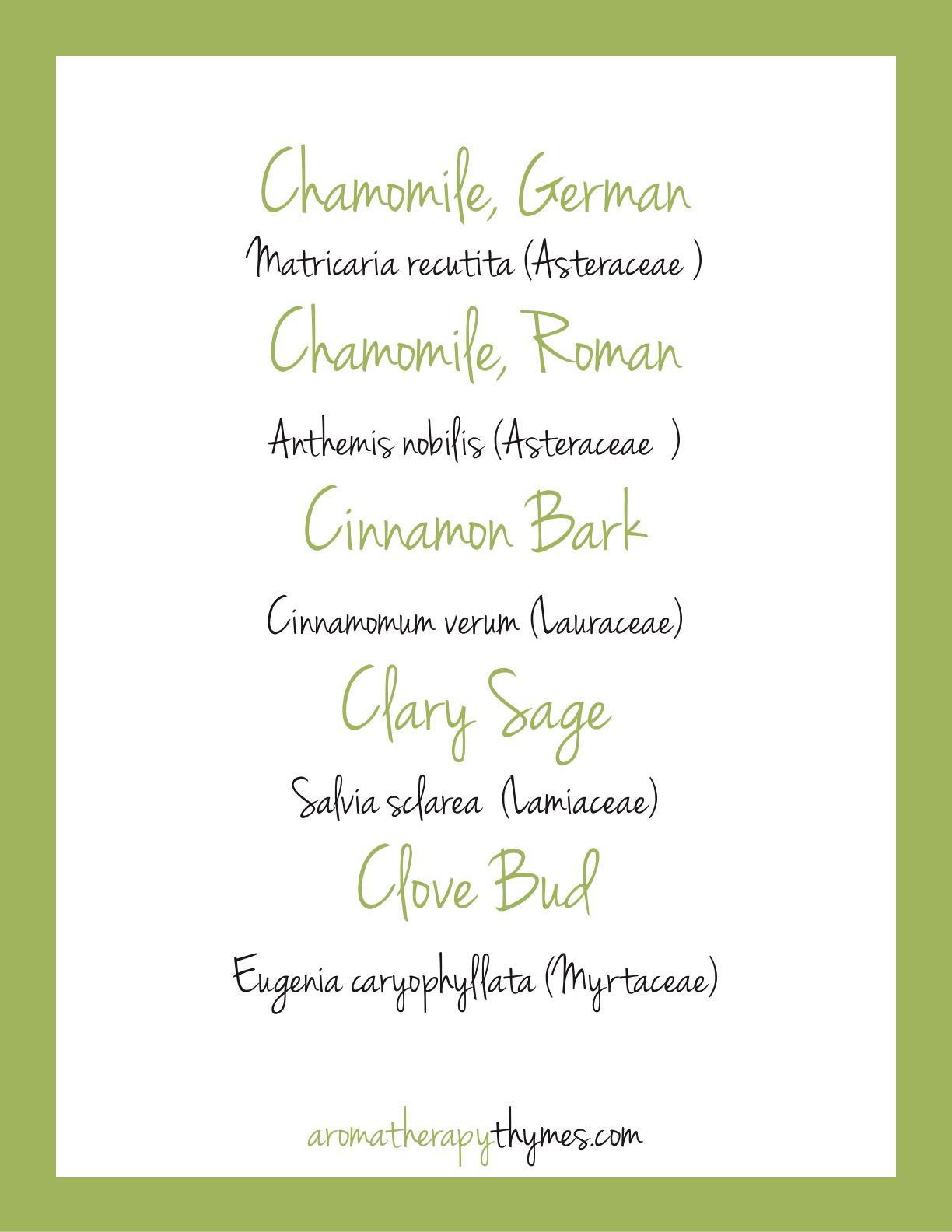Aromatherapythymesmagazine Aromatherapy Blends Organic Wellness Essential Oil Companies