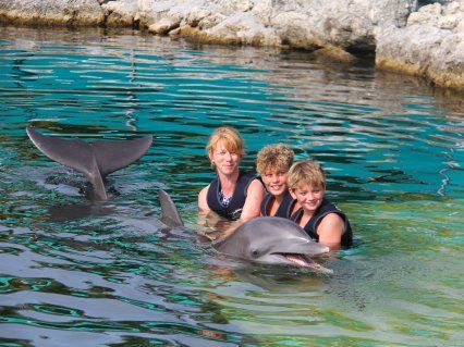Dolphins Plus Swim With Dolphins Swimming With Dolphins In Key Largo Florida Are The Bes Dolphin Encounters Family Friendly Vacation Destinations Key Largo