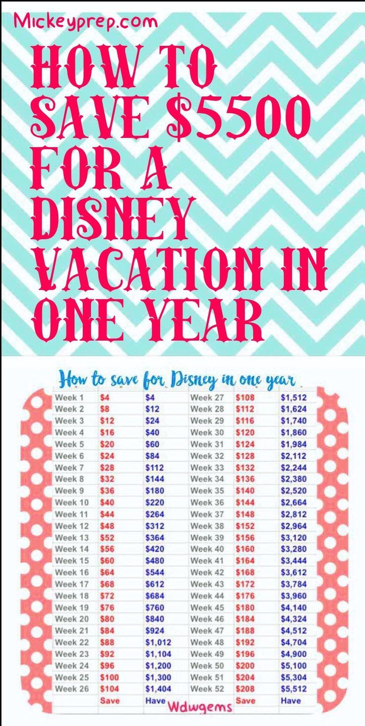 How to Save and budget For Disney in One Year Disney