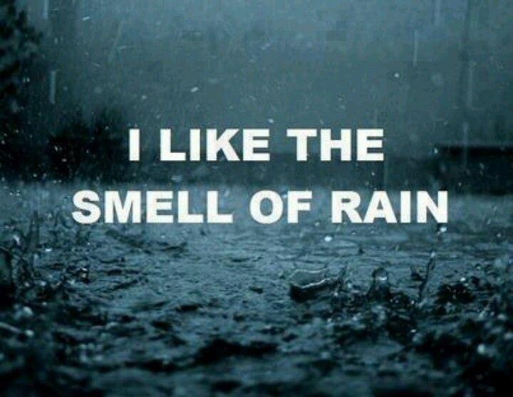 Rain smells good :-)