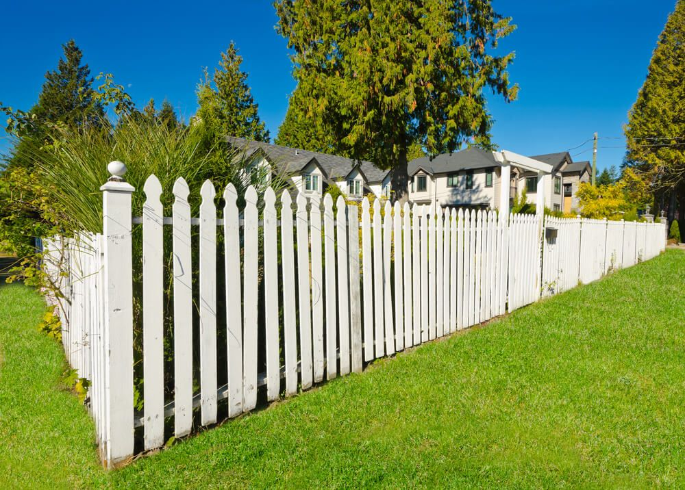 75 Fence Designs Styles Patterns Tops Materials And Ideas Fence Design Backyard Fences Fence Landscaping