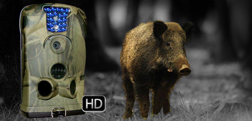 Piège photo animaux infrarouge Naturacam