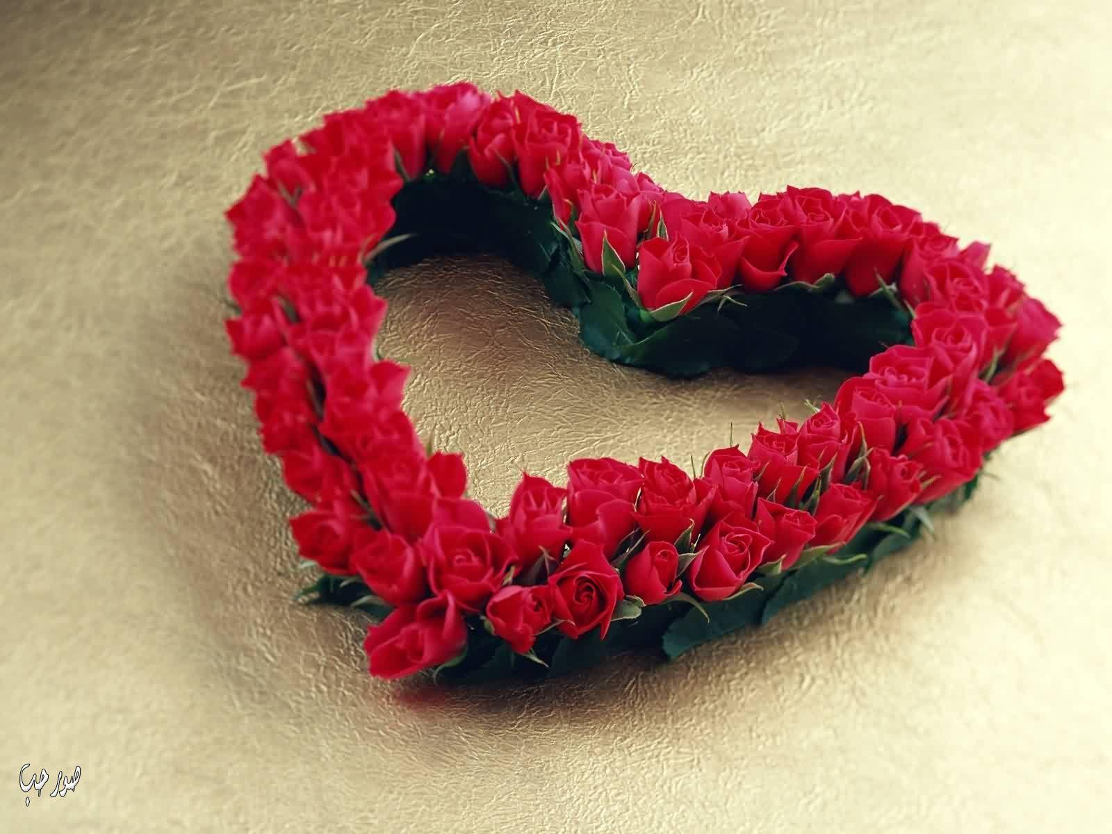 خلفيات حب قلوب ورد ورود للكمبيوتر صور رومانسية للاب توب مذهلة Love Hearts Red Roses Free Valentine Flower Gift