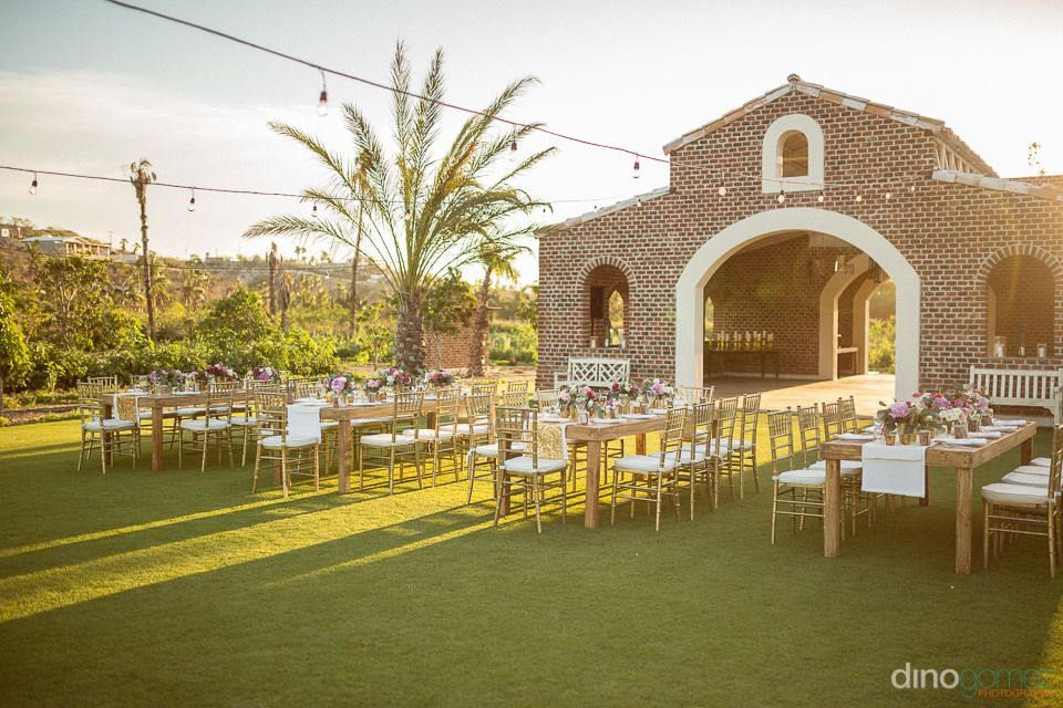 Wedding Reception At Flora Farm Los Cabos From Photographer Dino Gomez