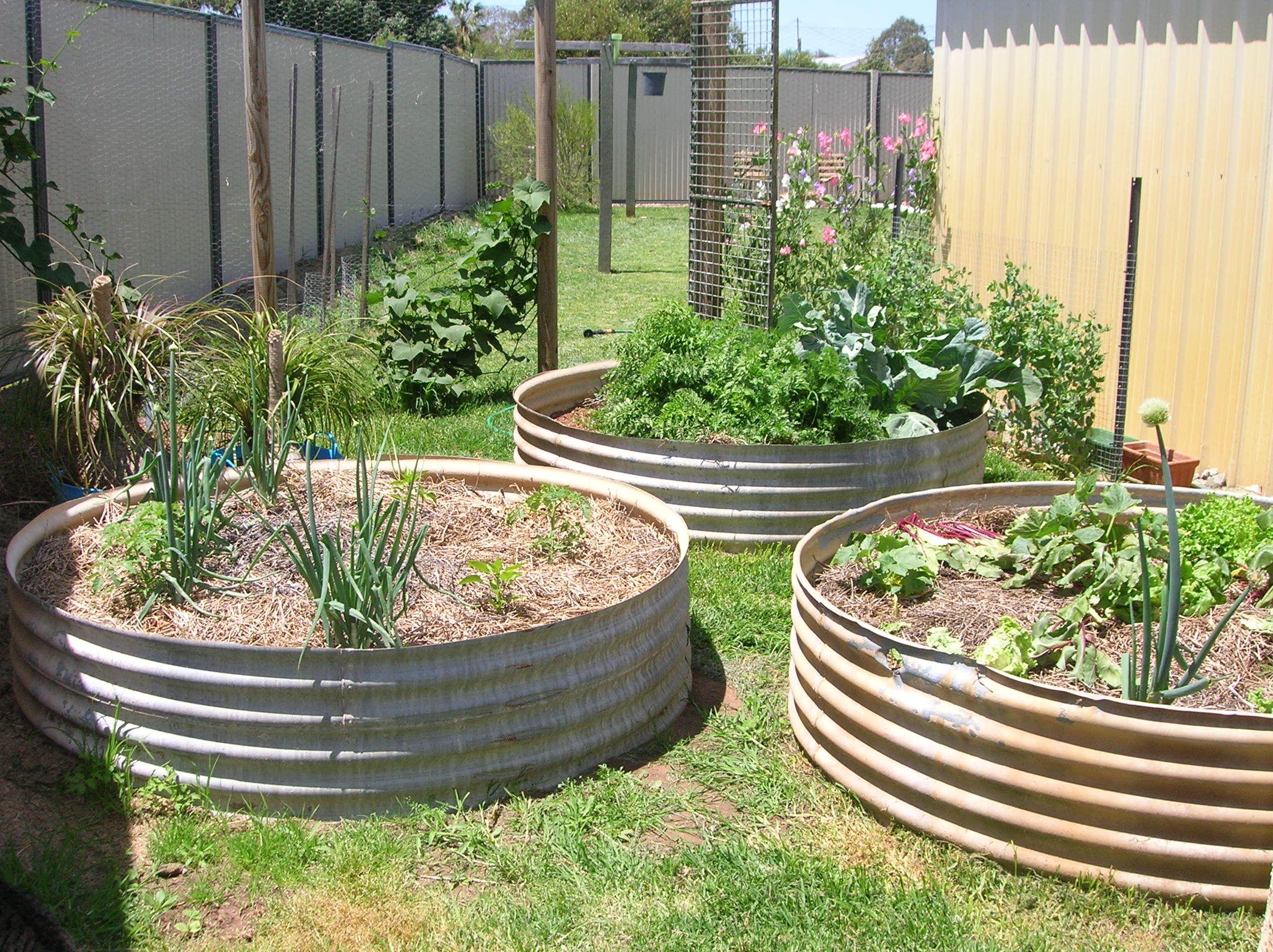 Pin On Country Gardening Yard Decor
