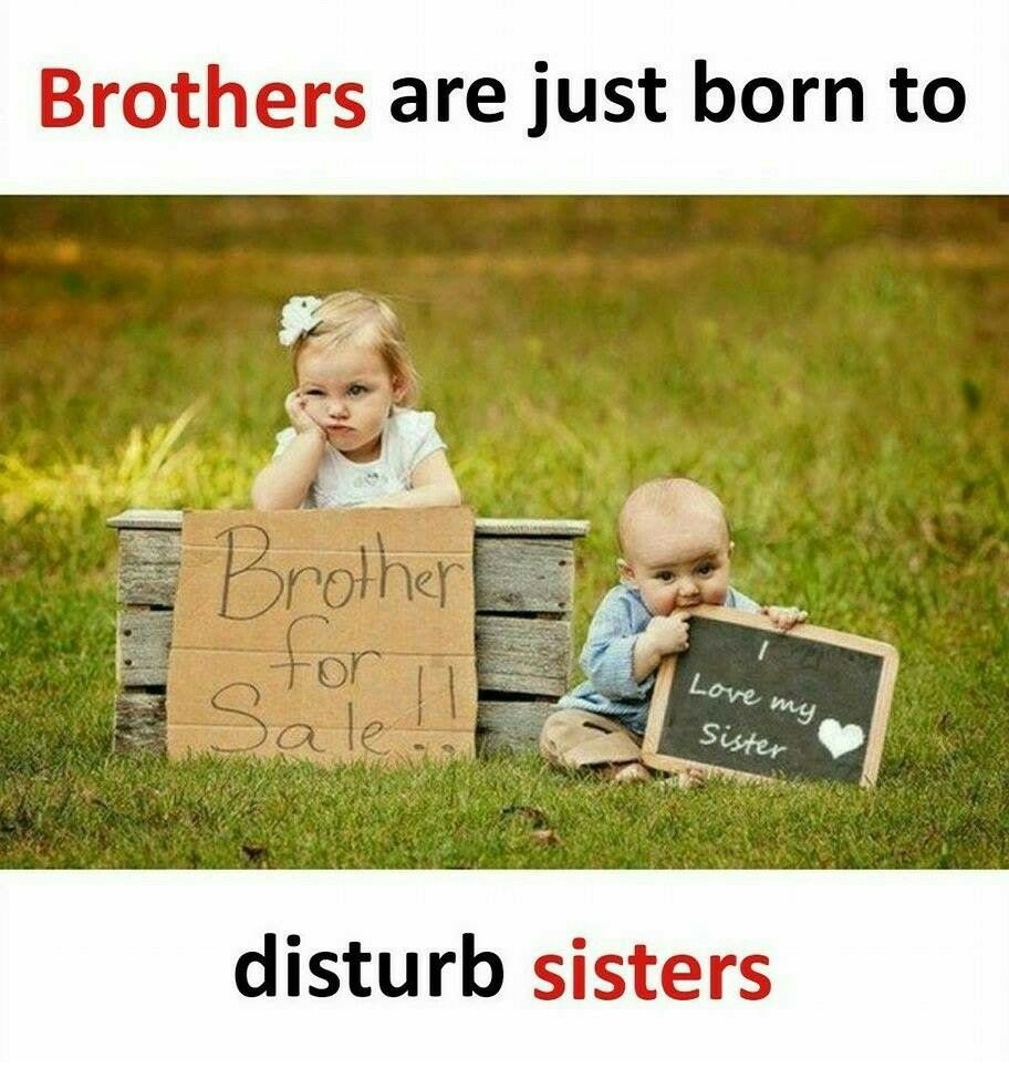 Pin By Maryam Hk On Lovely Quotes Sibling Photography New Baby Products Siblings Funny