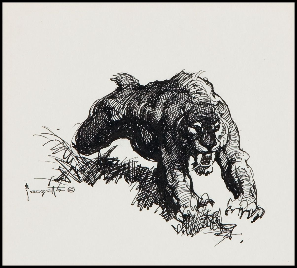 saber tooth tiger sketch by frank frazetta 1970 u0027s art