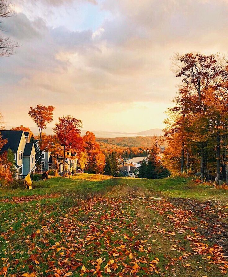 Vermont Fall Foliage Guide #autumnfoliage