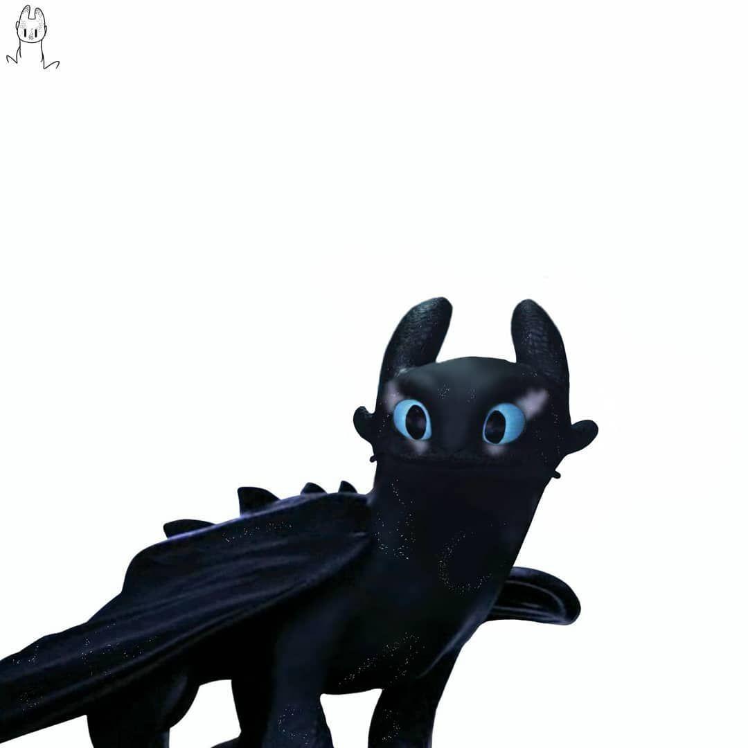 Gefallt 559 Mal 14 Kommentare Tᴇɴᴅᴇʀ Tenderrlie Auf Instagram I Think It Will Be My New Pfp How To Train Your Dragon Beautiful Dragon Lion Sculpture